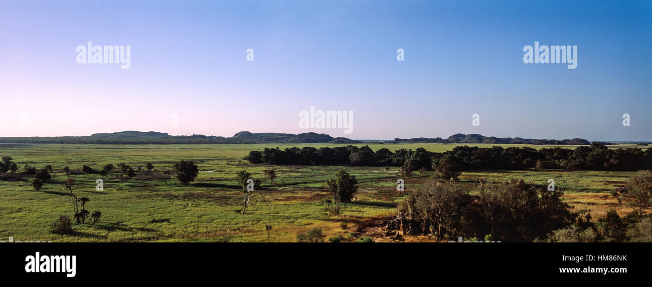 A vast lush floodplain at the height of the Top End, dry season. - Stock Image
