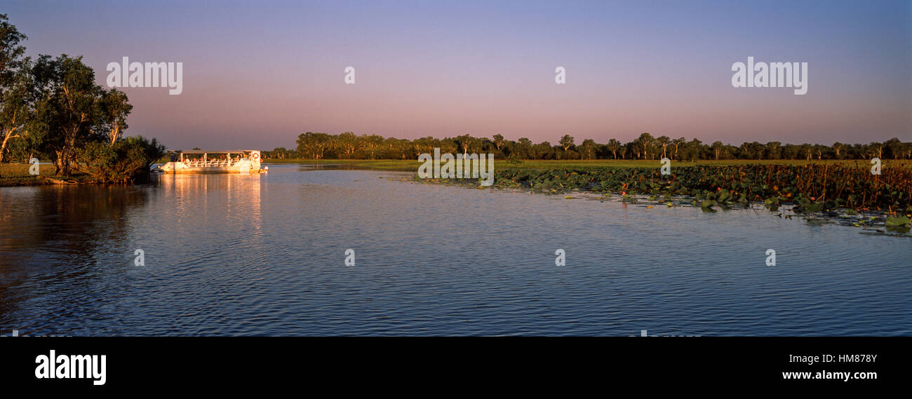 A tourist boat explores a tranquil billabong at sunset. - Stock Image