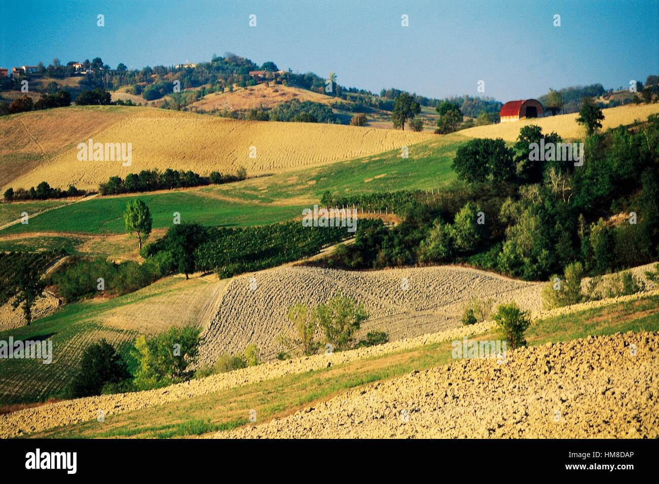 Hilly agriculture landscape between Castel San Pietro Terme and Sassoleone, Emilia-Romagna, Italy. - Stock Image
