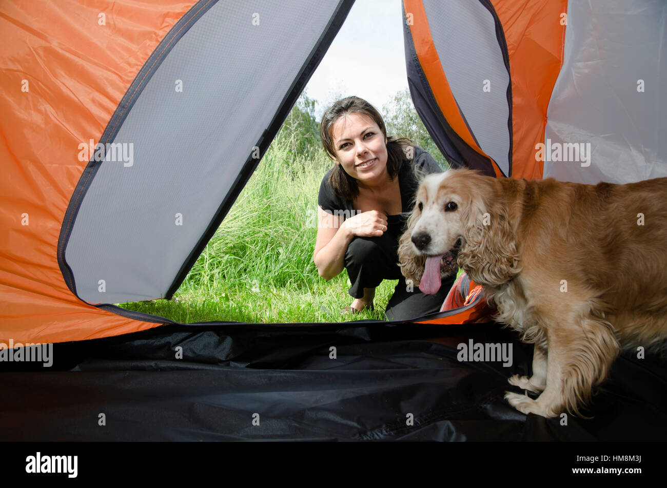 Woman Watching Inside A Tent With Her Cute Cocker Spaniel Dog In