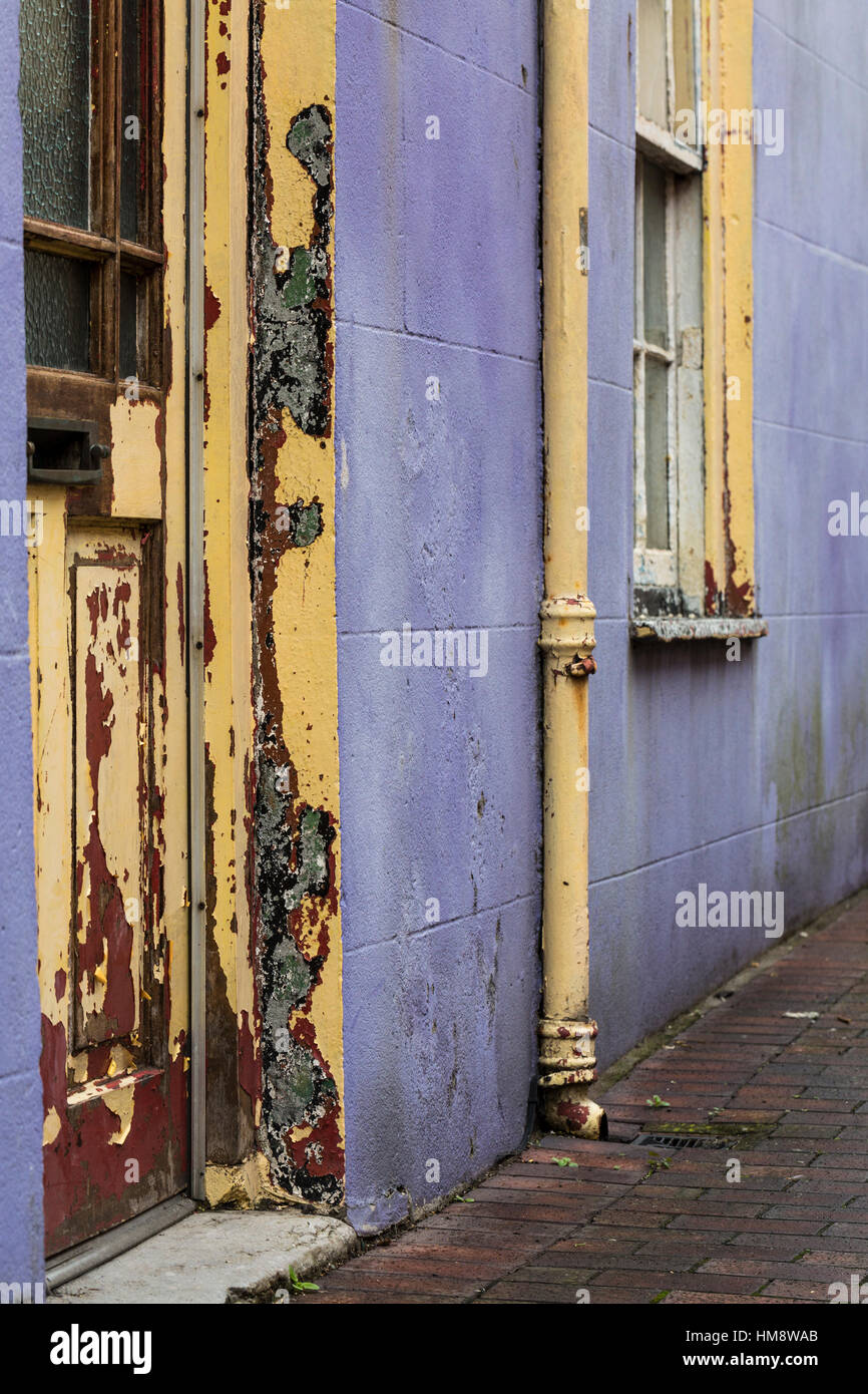 Peeling paintwork on doorway and house front in purple and yellow - Stock Image