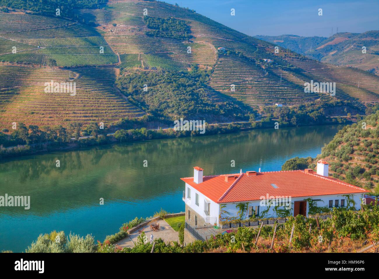 Quinta da Marka overlooking the Douro River, Alto Douro Wine Valley, Portugal - Stock Image