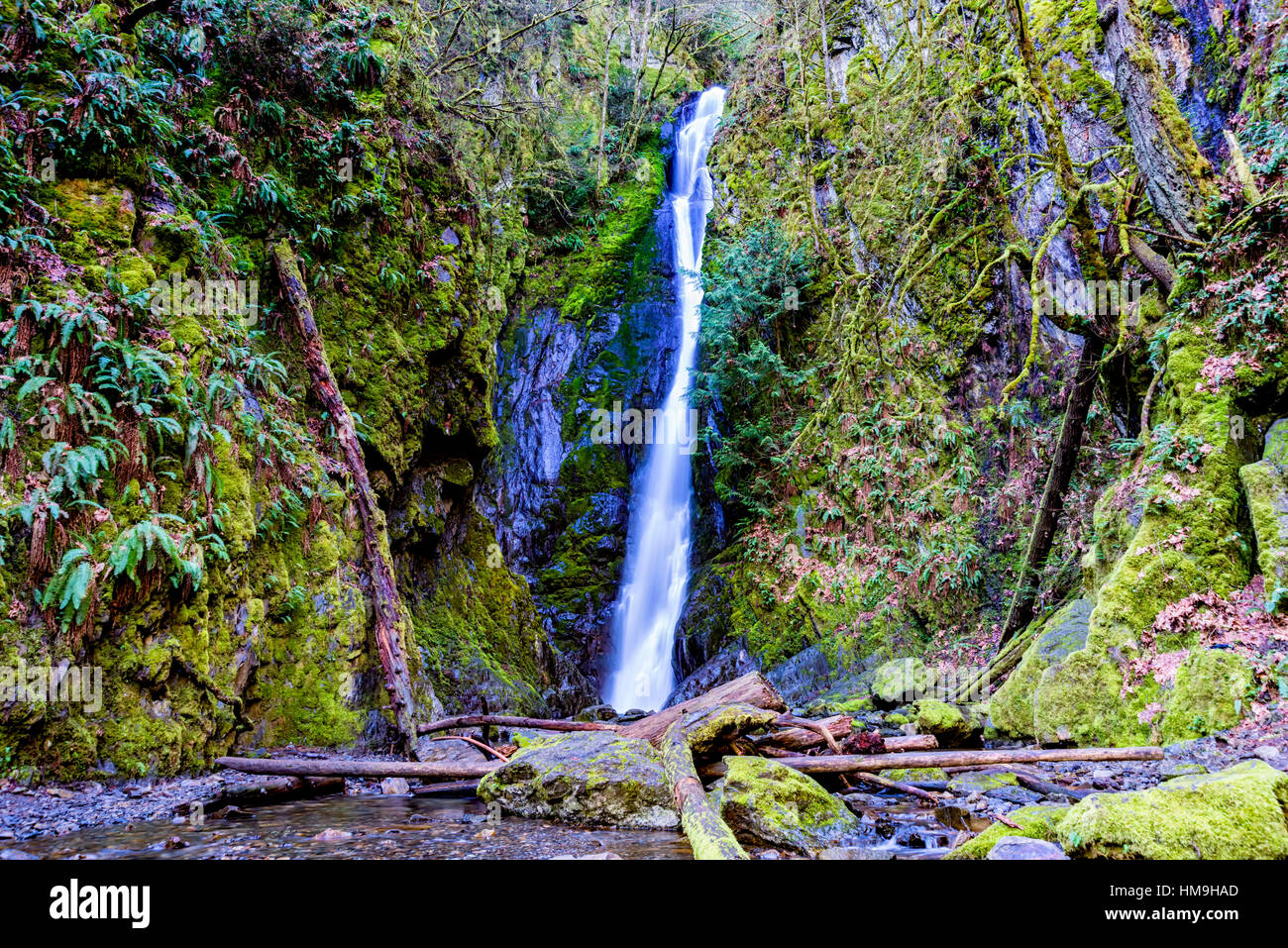 Nature of Vancouver Island - Niagara waterfalls in Early spring, Goldstream provincial park, Vancouver island, Canada Stock Photo