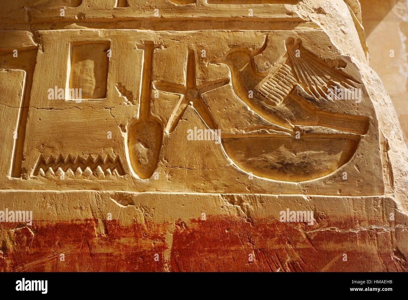 Hieroglyph. Hatshepsut Temple. West Bank. Luxor old Thebas. Upper Egypt. - Stock Image