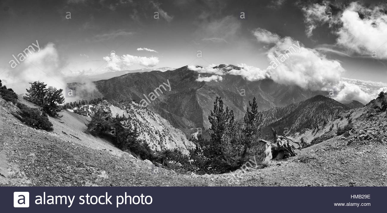 Baden Powell Trail, Wrightwood, California - Stock Image