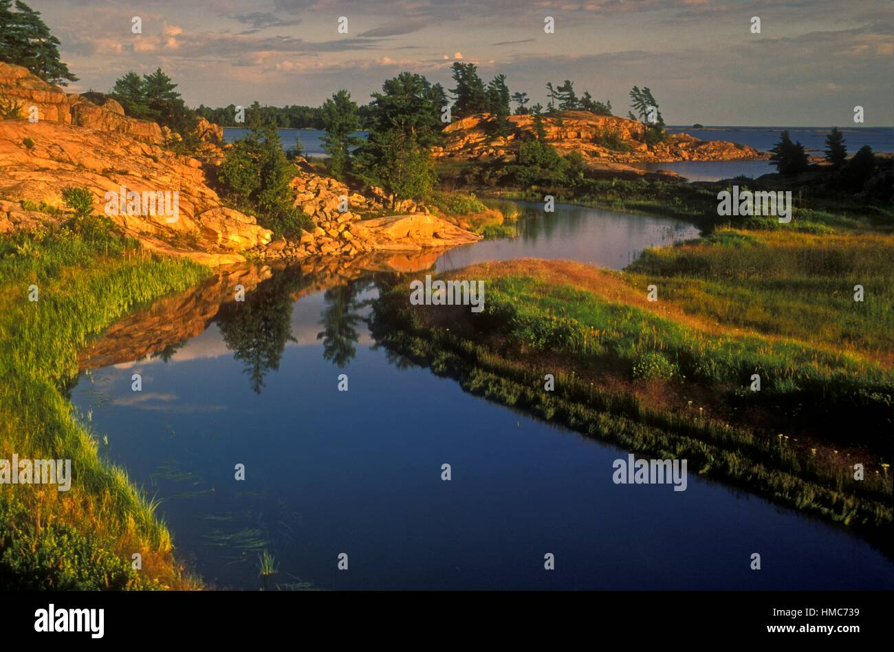 Evening light on granites and white pine at mouth of Chikanishing Creek in Georgian Bay, Killarney Provincial Park, - Stock Image