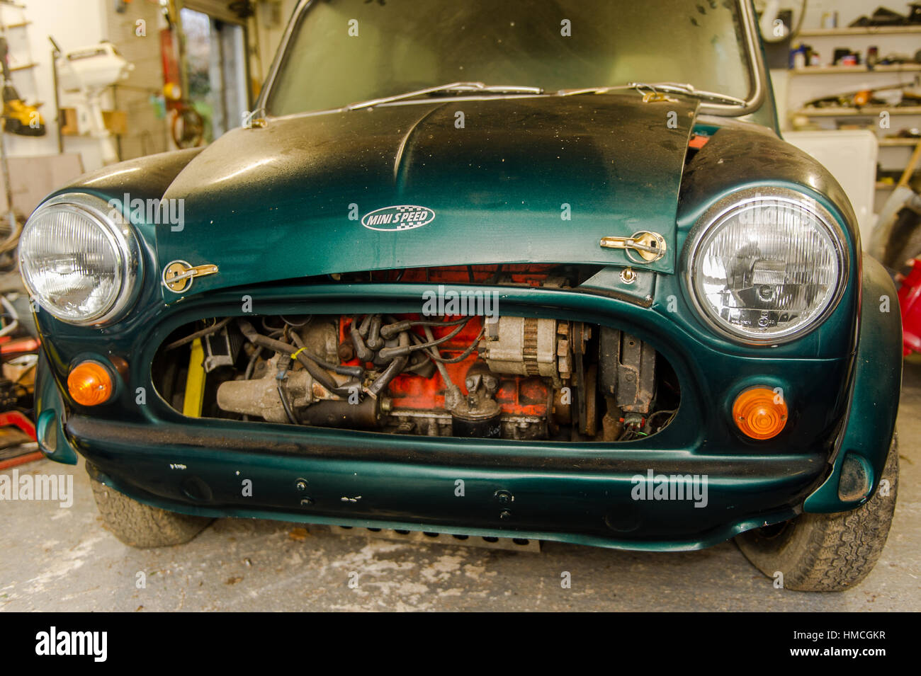 An old/classic green Austin Mini Cooper partly taken apart/stripped down for restoration in a domestic garage/workshop. - Stock Image
