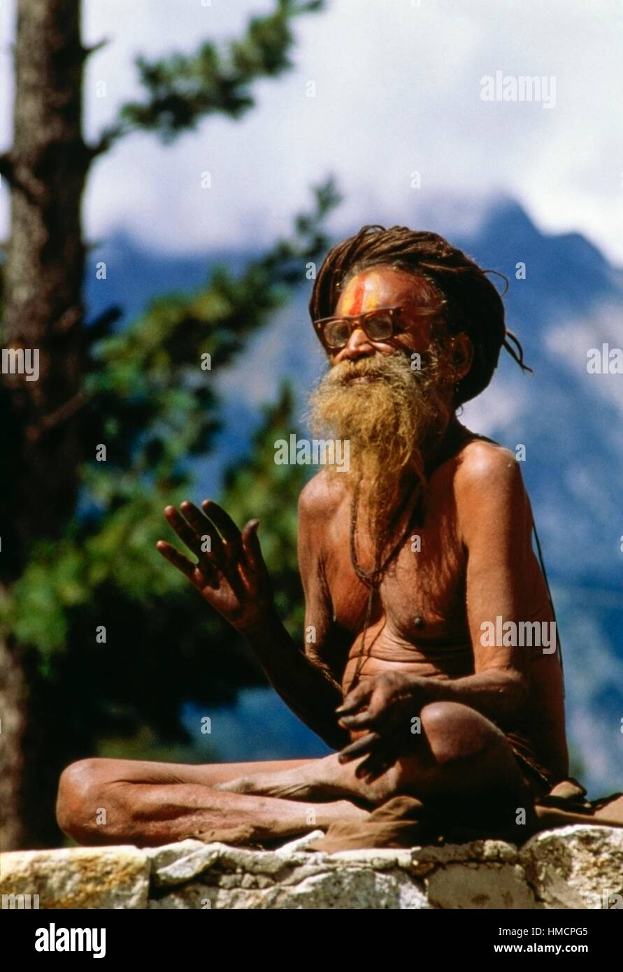 Sadhu, Hindu ascetic, with jata, typical hairstyle, Rajasthan, India. - Stock Image