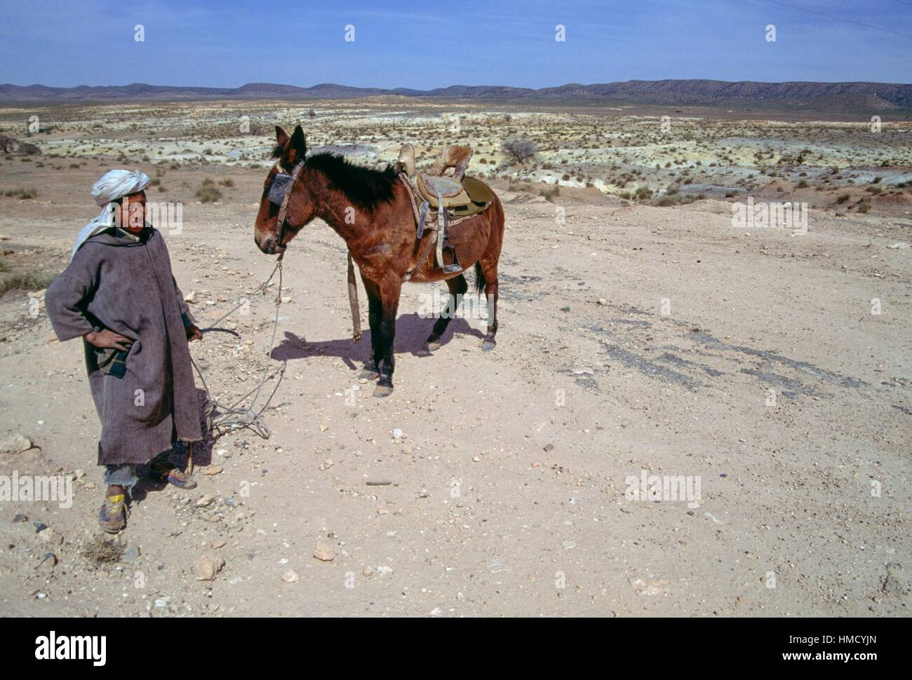 Nomad with a horse, Djebel Amour, Algeria. - Stock Image