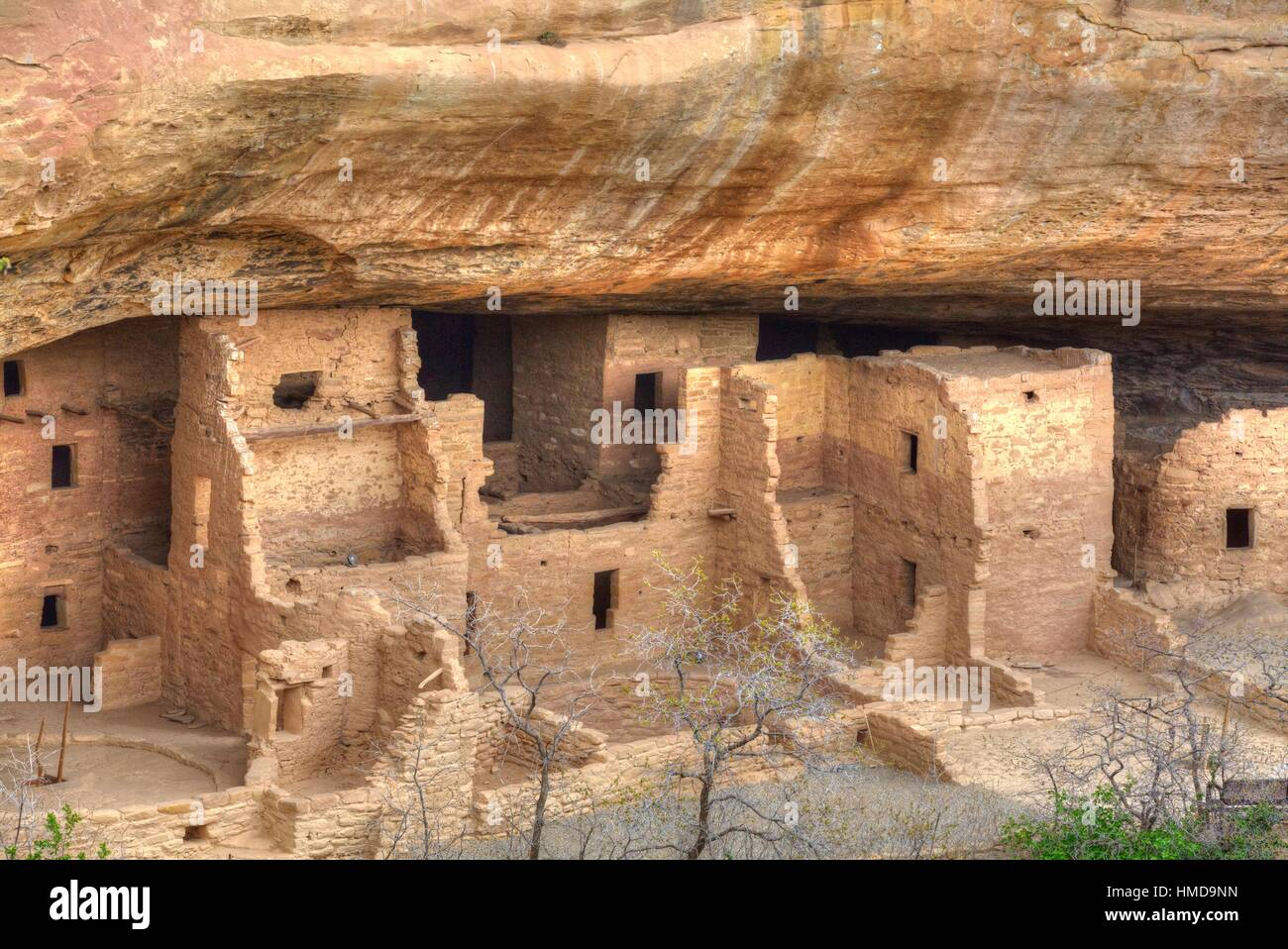 Anasazi Ruins, Spruce Tree House, Mesa Verde National Park, UNESCO World Heritage Site, 600 A.D. - 1,300 A.D., Colorado, - Stock Image