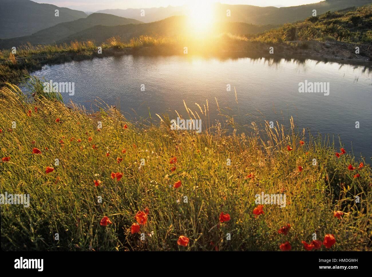 Drome department, region of Rhone-Alpes, southeastern France, Europe. - Stock Image