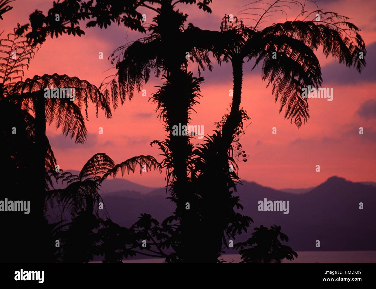 Lake Arenal at sunset. Arenal National Park, Costa Rica - Stock Image