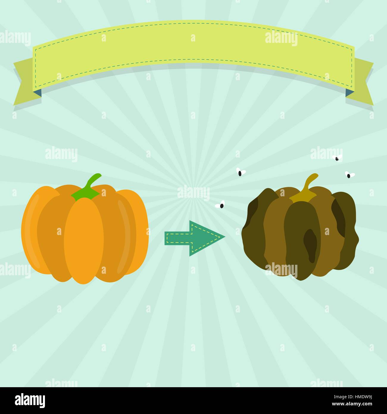 Rotten pumpkin with flies and fresh pumpkin. Blank ribbon for insert text. - Stock Vector