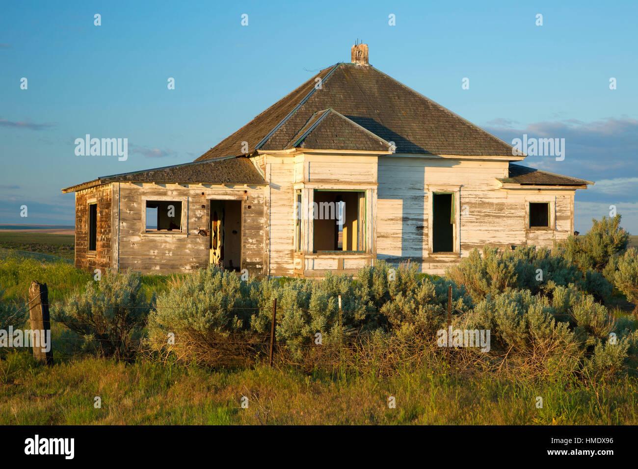 Abandoned homestead, Gilliam County, Oregon - Stock Image