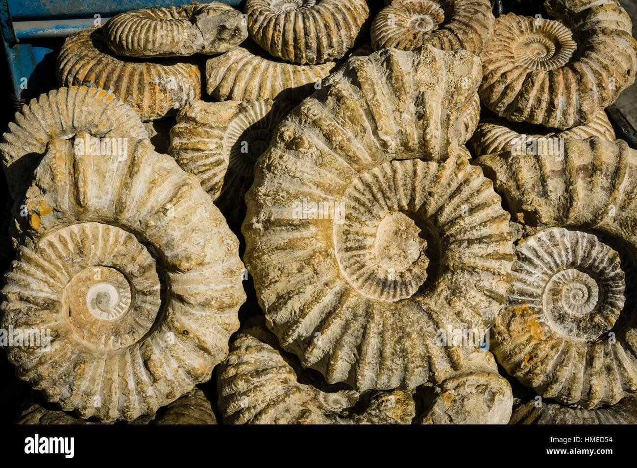 Fossils for sale in the souk  Chefchaouen (Chaouen), Morocco
