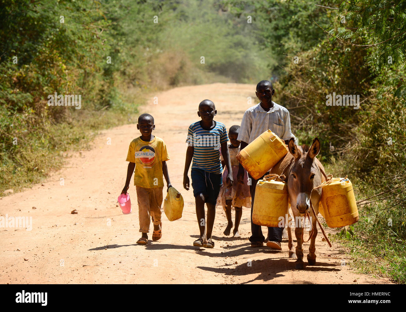 KENIA, Mount Kenya East , extreme drought due to lack of rain has caused massive water problems, villager transport - Stock Image