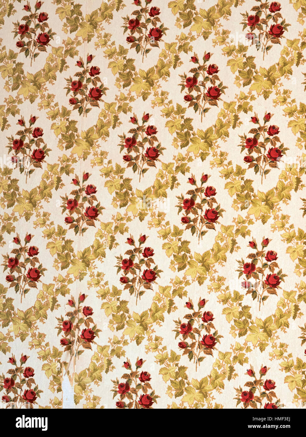 Piece of old damaged wallpaper with a retro vertical stripe pattern and floral design - Stock Image
