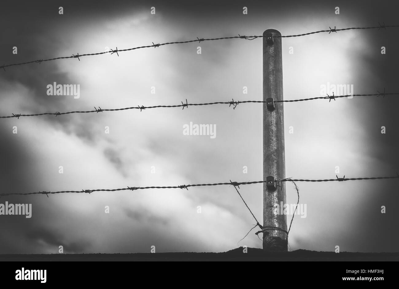 Barbwire in front of a cloudy sky - Stock Image