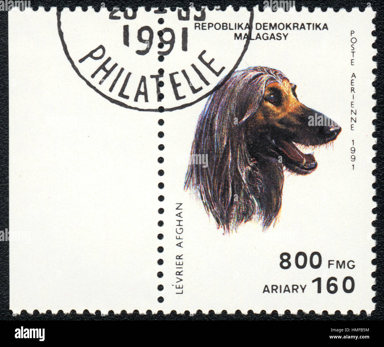 A postage stamp printed in Republica Malagasy shows a dog Levrier afghan, from series Breeds of dogs ,1991 Stock Photo