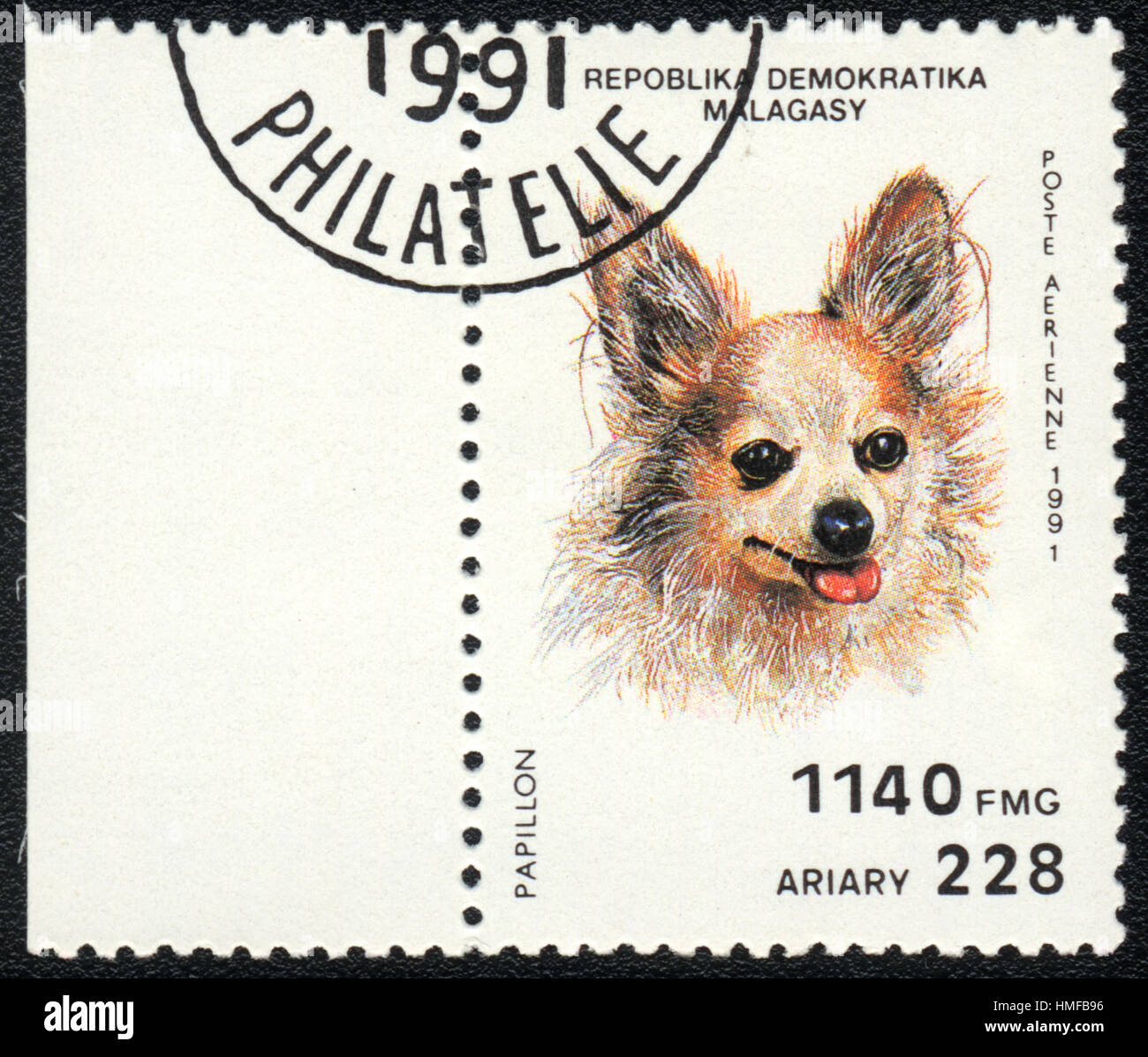 A postage stamp printed in Republica Malagasy shows a dog Papillon dog , from series Breeds of dogs , circa 1991 Stock Photo