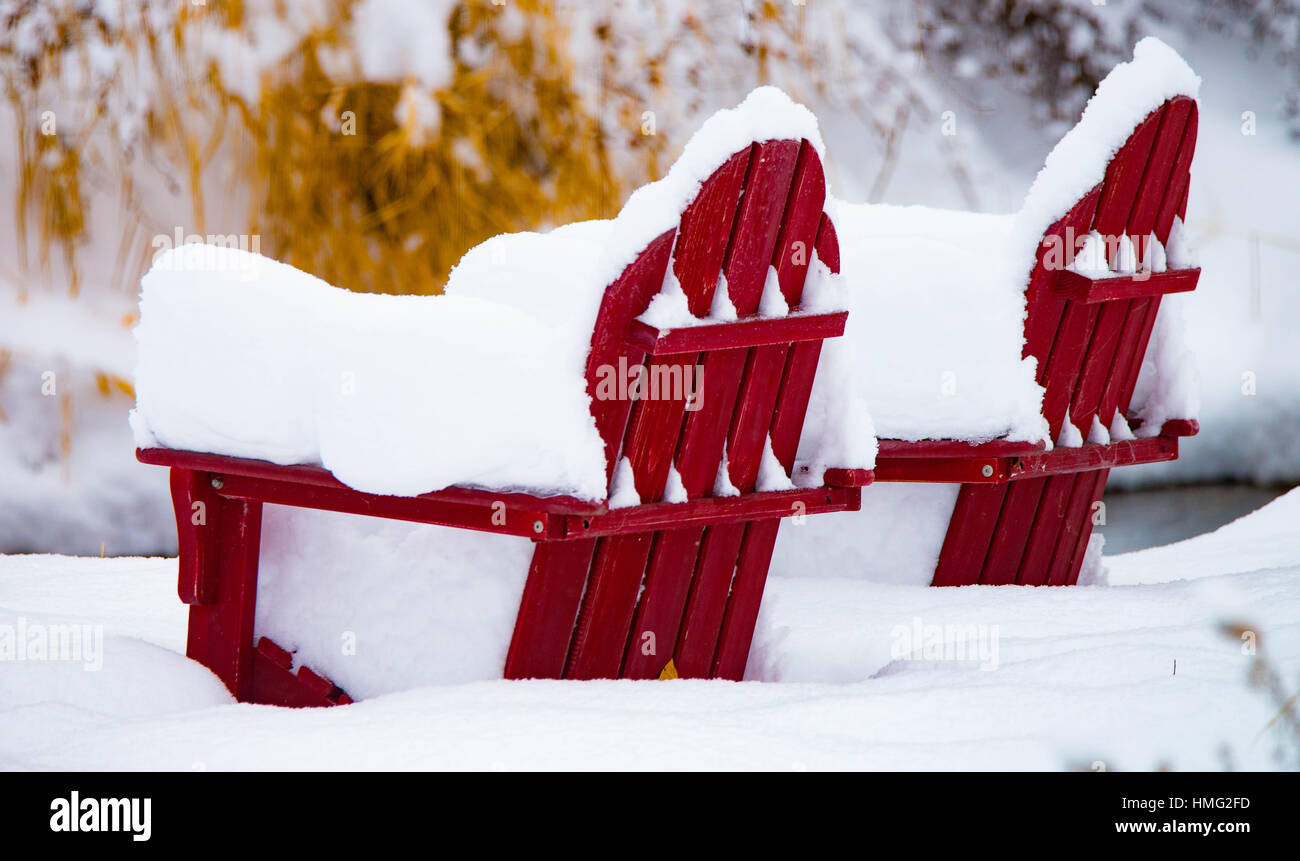 Winter, Adirondack Chairs covered with fresh snow fall. Loggers Creek, Boise, Idaho, USA - Stock Image