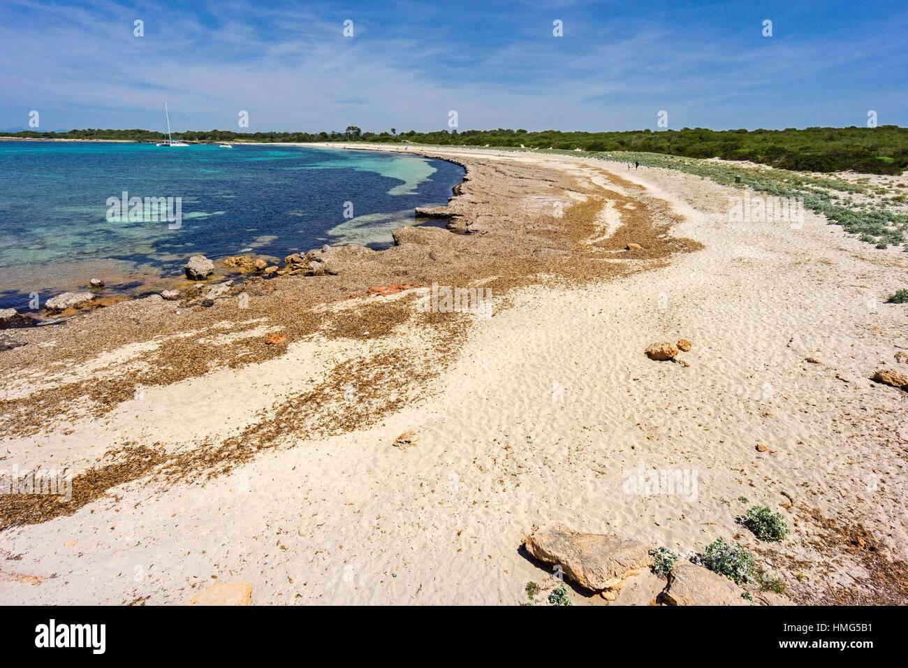 Platja des Caragol ,Santanyi, Ã. rea Natural de Especial Interés, Mallorca, Balearic Islands, Spain - Stock Image