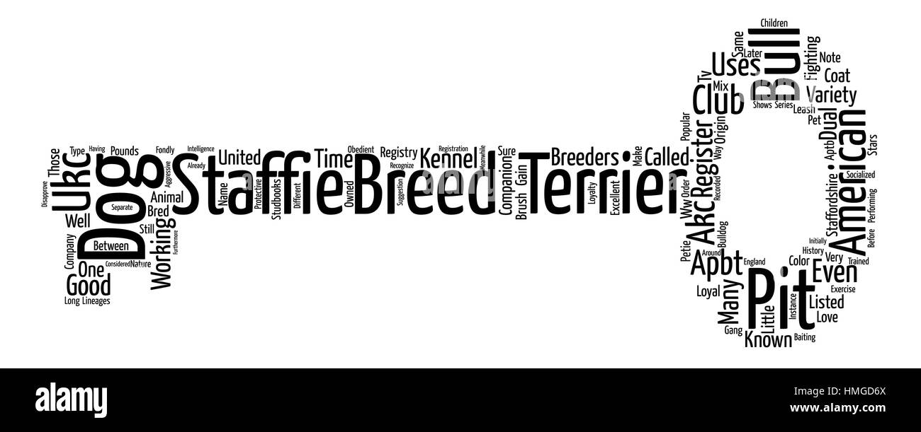 bull dog pit terrier Word Cloud Concept Text Background - Stock Image