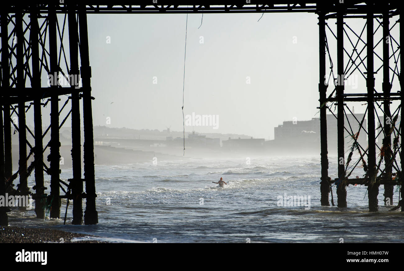 Brighton, UK. 3rd Feb, 2017. Members of Brighton Swimming Club enjoy their daily dip by the pier in the morning Stock Photo