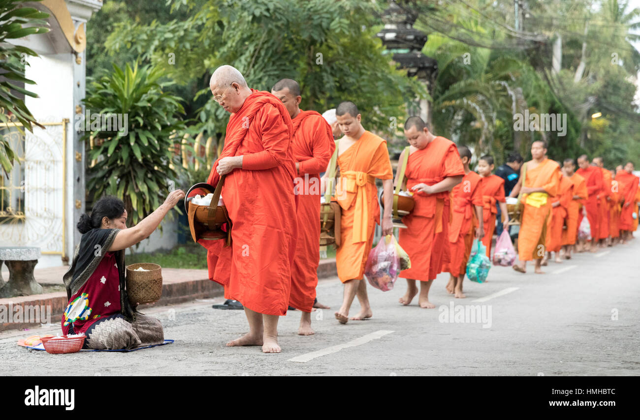 Monks and Donors, Early Morning Alms Procession, Luang Prabang, Laos - Stock Image