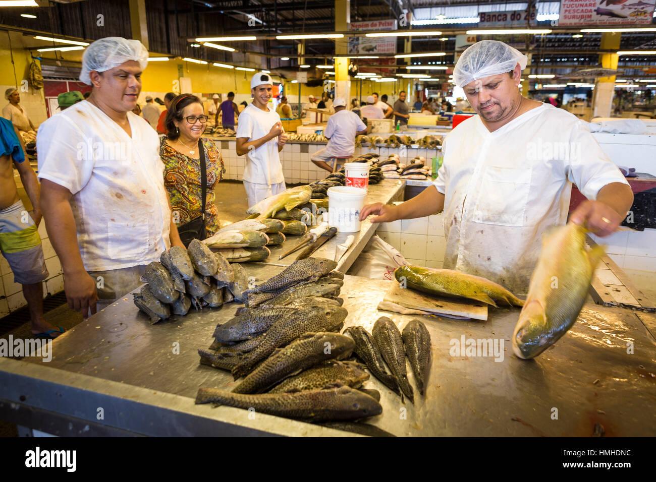 Amazon river fish in market stock photos amazon river for River fish market