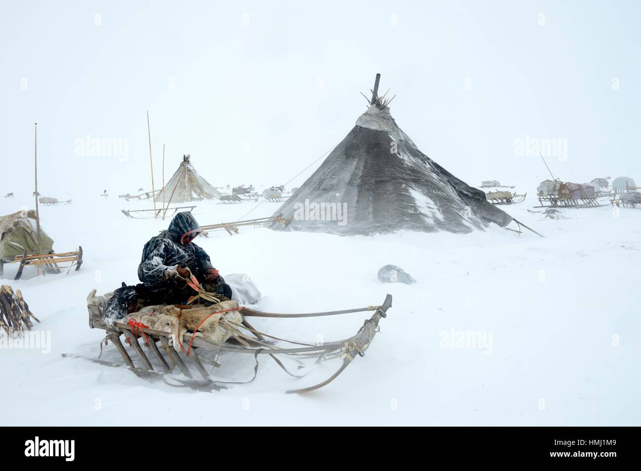 Nenets herder warmly dressed and fixing his sled at camp in the storm / blizzard, Yar-Sale district, Yamal, Northwest - Stock Image