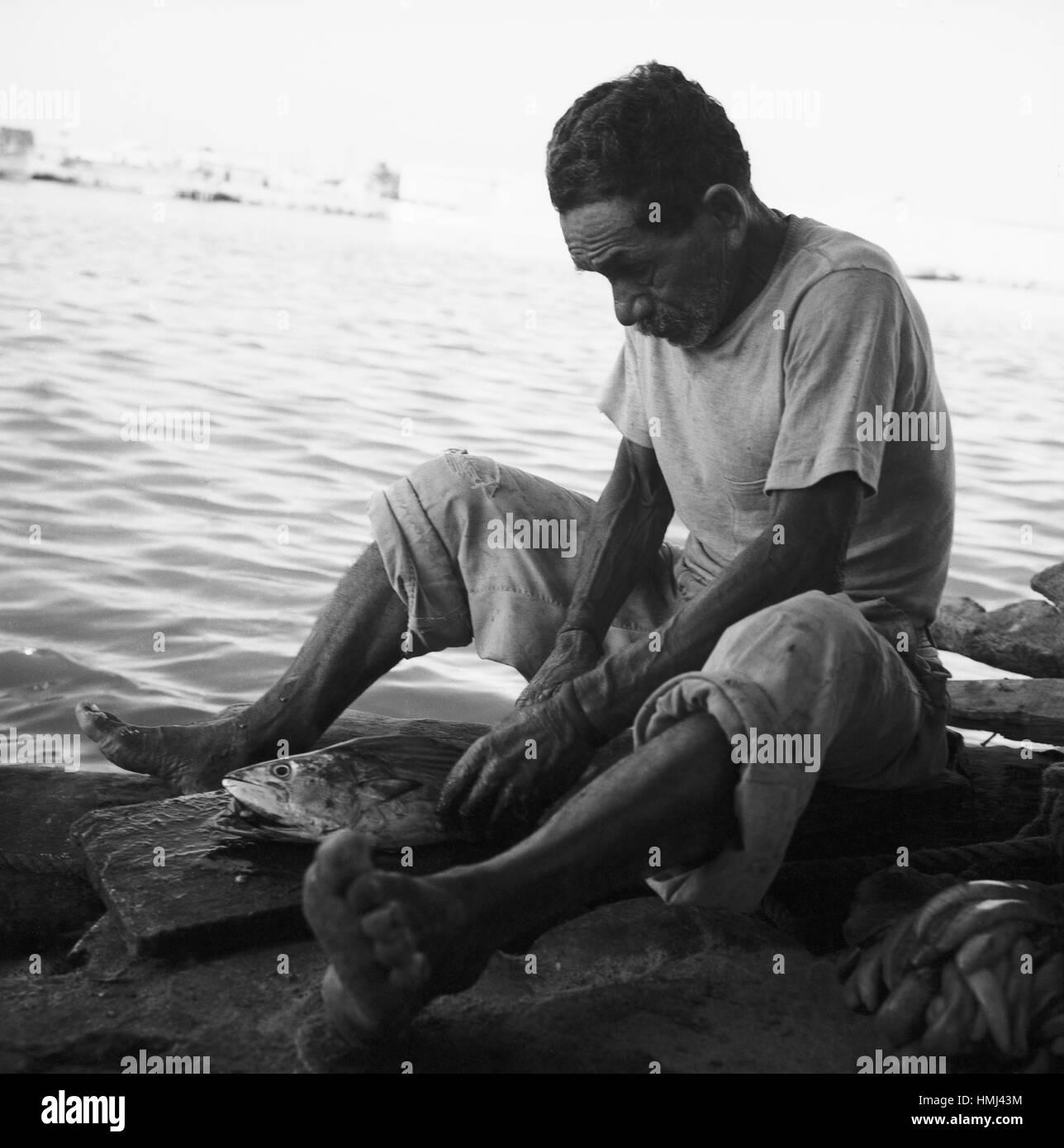 Mann am Rio Manzanares in Cumaná schneidet Fisch auf, Venezuela 1966. Man next to the Rio Manzanares in Cumaná cuts Stock Photo