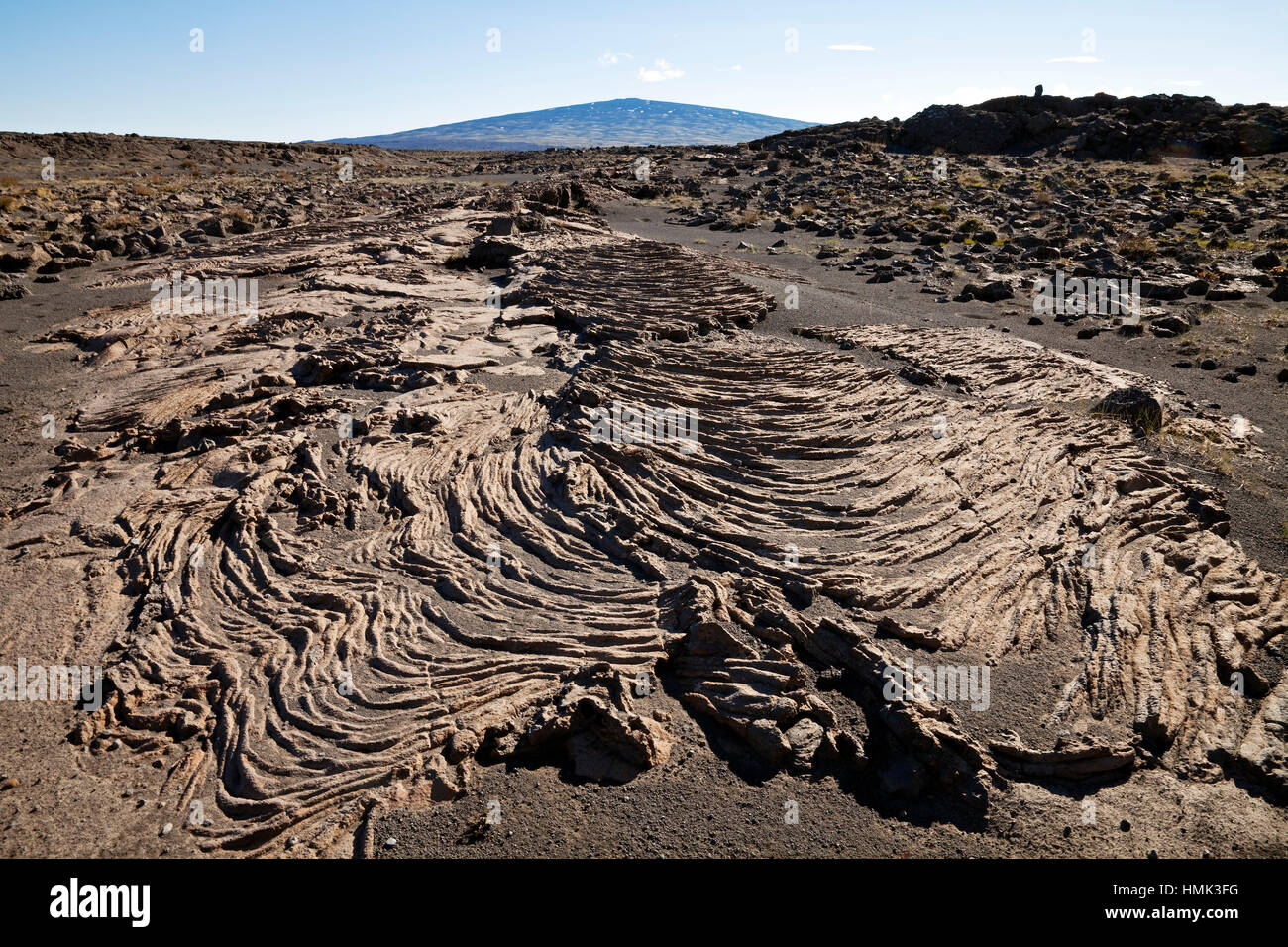 Solidified ropy lava, shield volcano Skjaldbreiður at back, Iceland - Stock Image