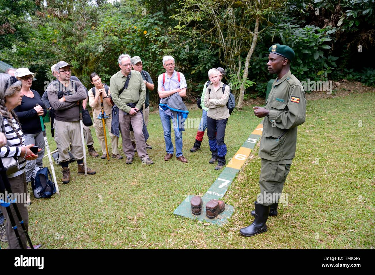 Guide explaining the 7 metres distance regulation rule to tourists, Bwindi Impenetrable Forest, Uganda, Africa. - Stock Image