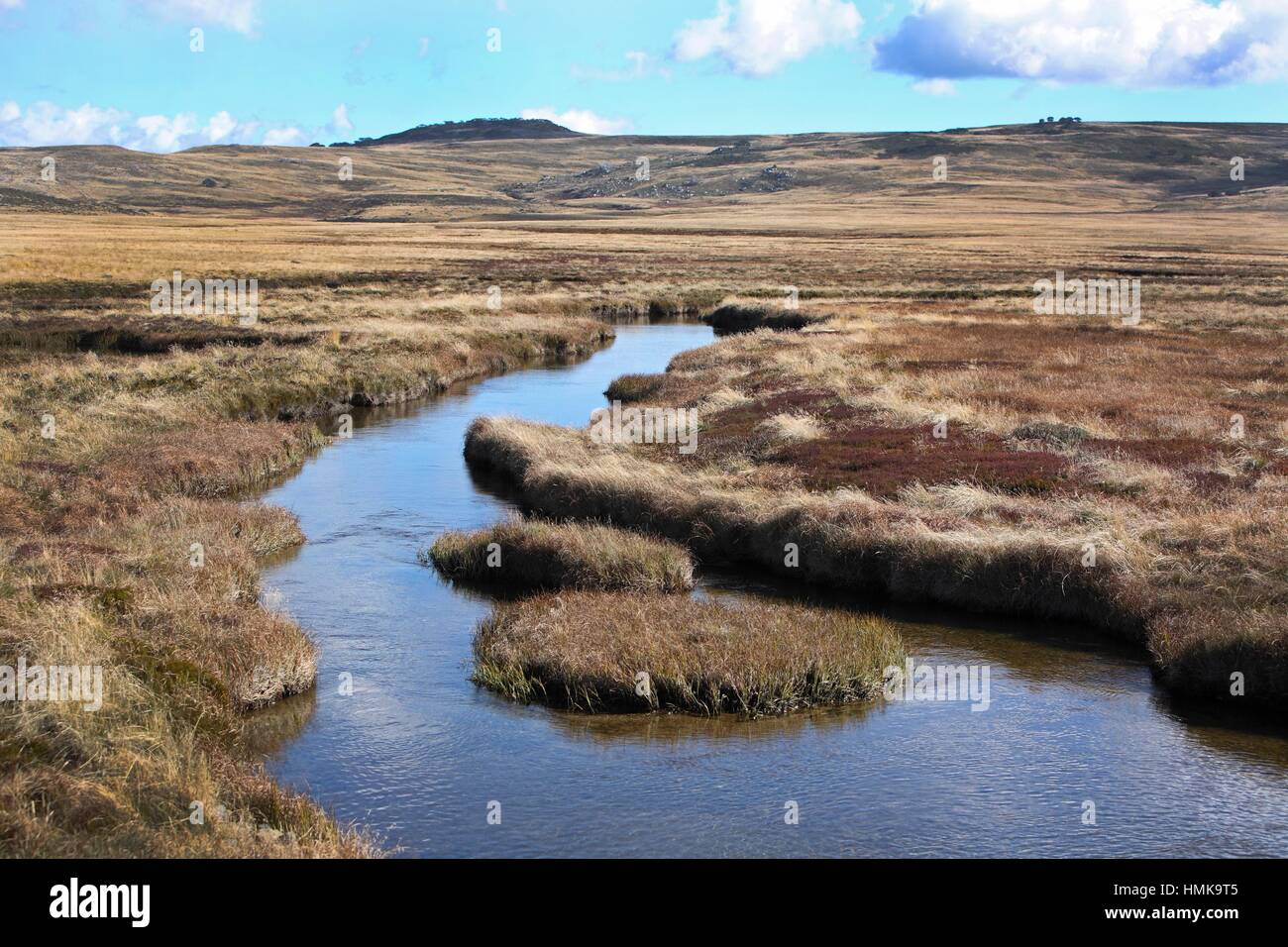 Creek at Bogong High plains in the Victorian High Country, Australia. - Stock Image