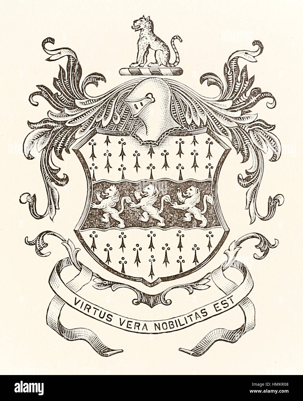 Heraldic achievement of William Mather of Salop (Shropshire, England) featuring 3 lions and the motto 'Virtus - Stock Image