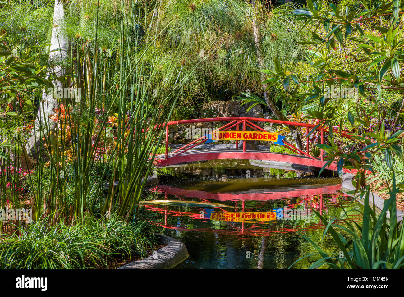 Sunken Gardens 100 Year Old Botanical Gardens In St Petersburg Stock Photo 133208031 Alamy