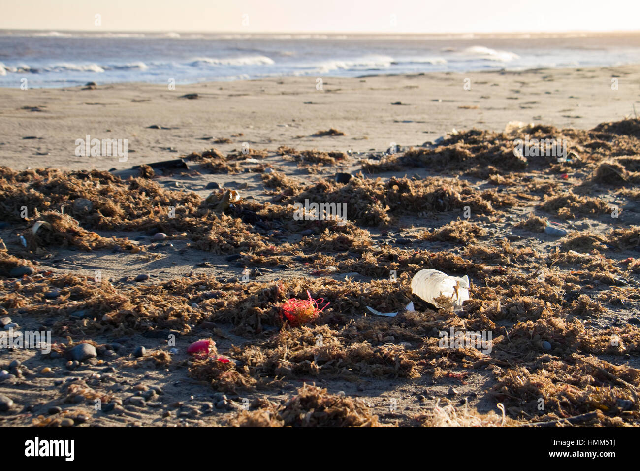 Plastics and litter on beach at Spurn Point, East Yorkshire, UK - Stock Image