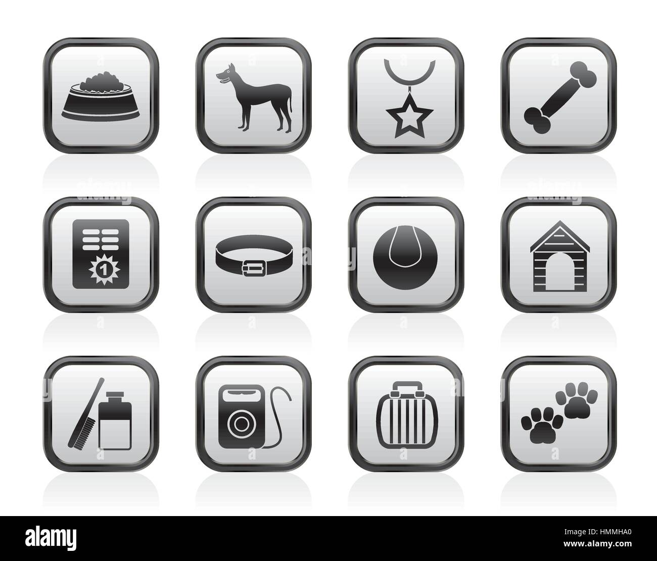 dog accessory and symbols icons - Stock Image