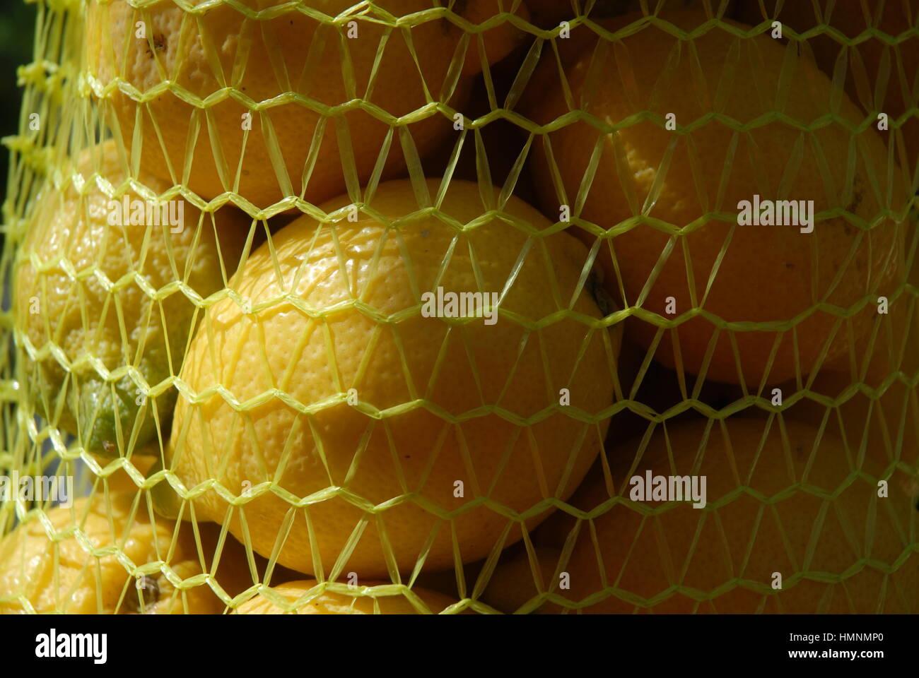 Lemons in a mesh bag - Stock Image