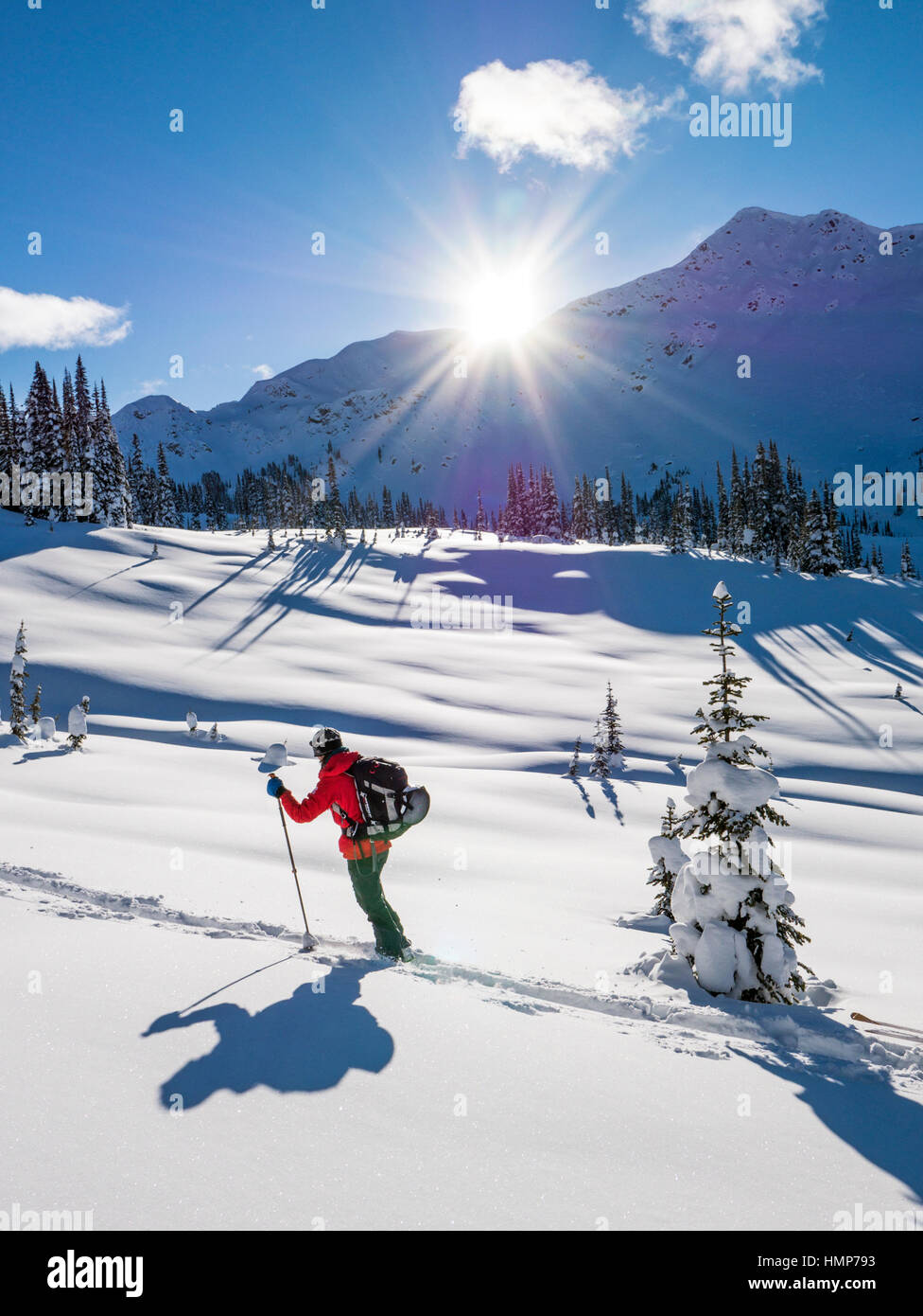 Back country skiers use synthetic skins to climb; Esplanade Range; Selkirk Mountains near remote Sentry Lodge;  - Stock Image