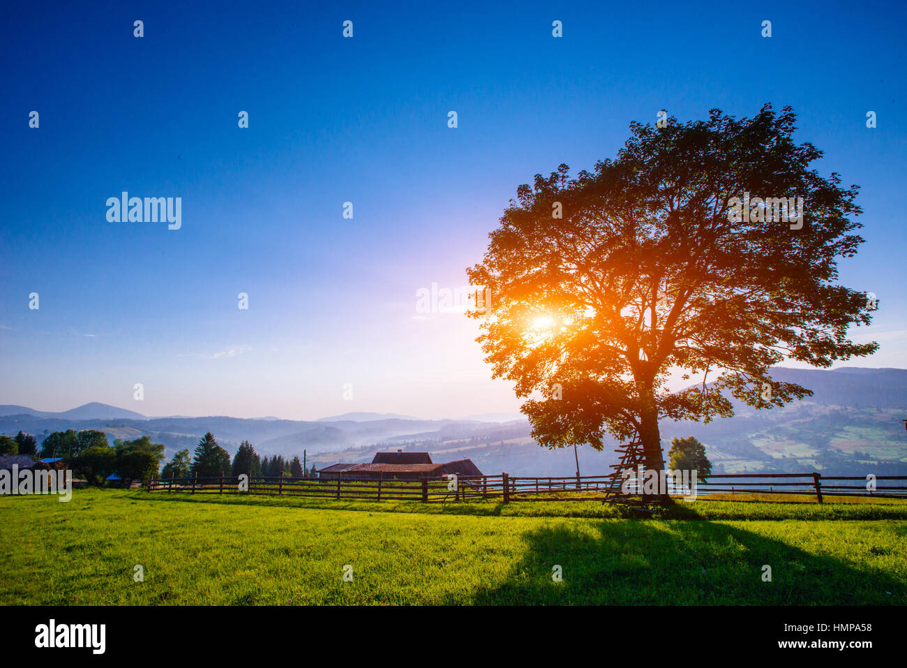 Blue Sky with a Beautiful Meadow - Stock Image