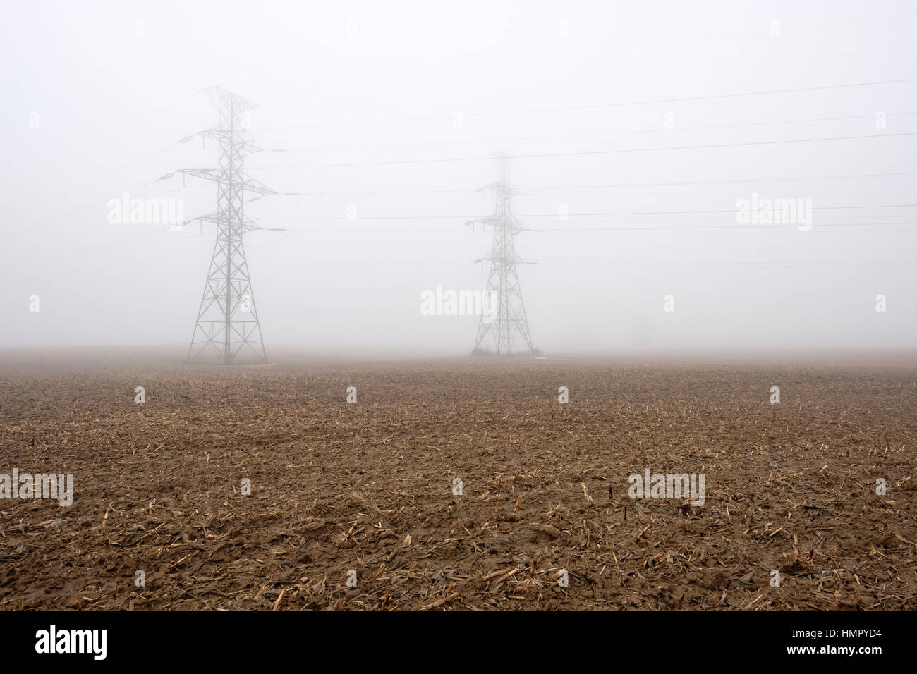 Two power line towers / pylons in a farm field under heavy fog in Southwest Ontario, Canada. - Stock Image
