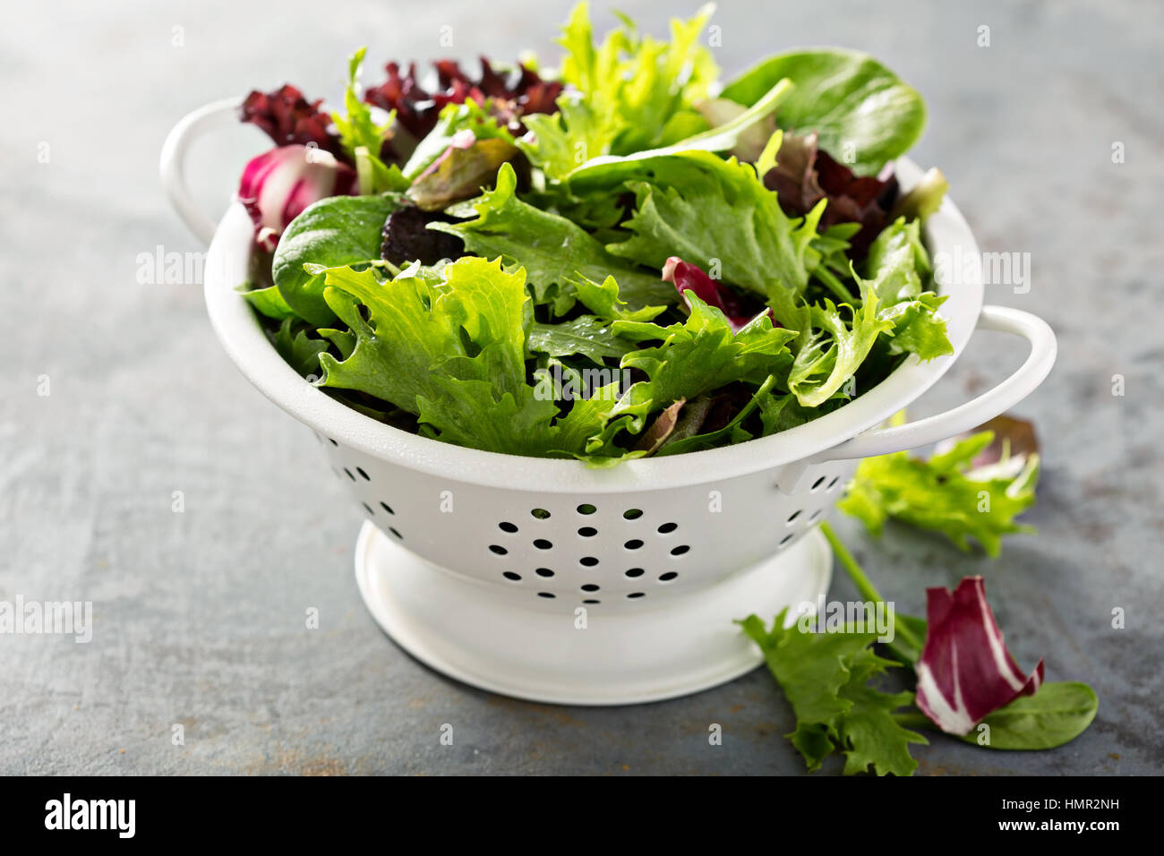Fresh green spring mix salad leaves in a collander Stock Photo