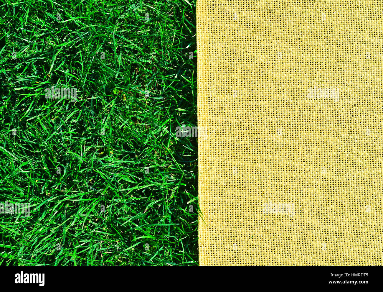 Green grass texture and sackings texture Stock Photo