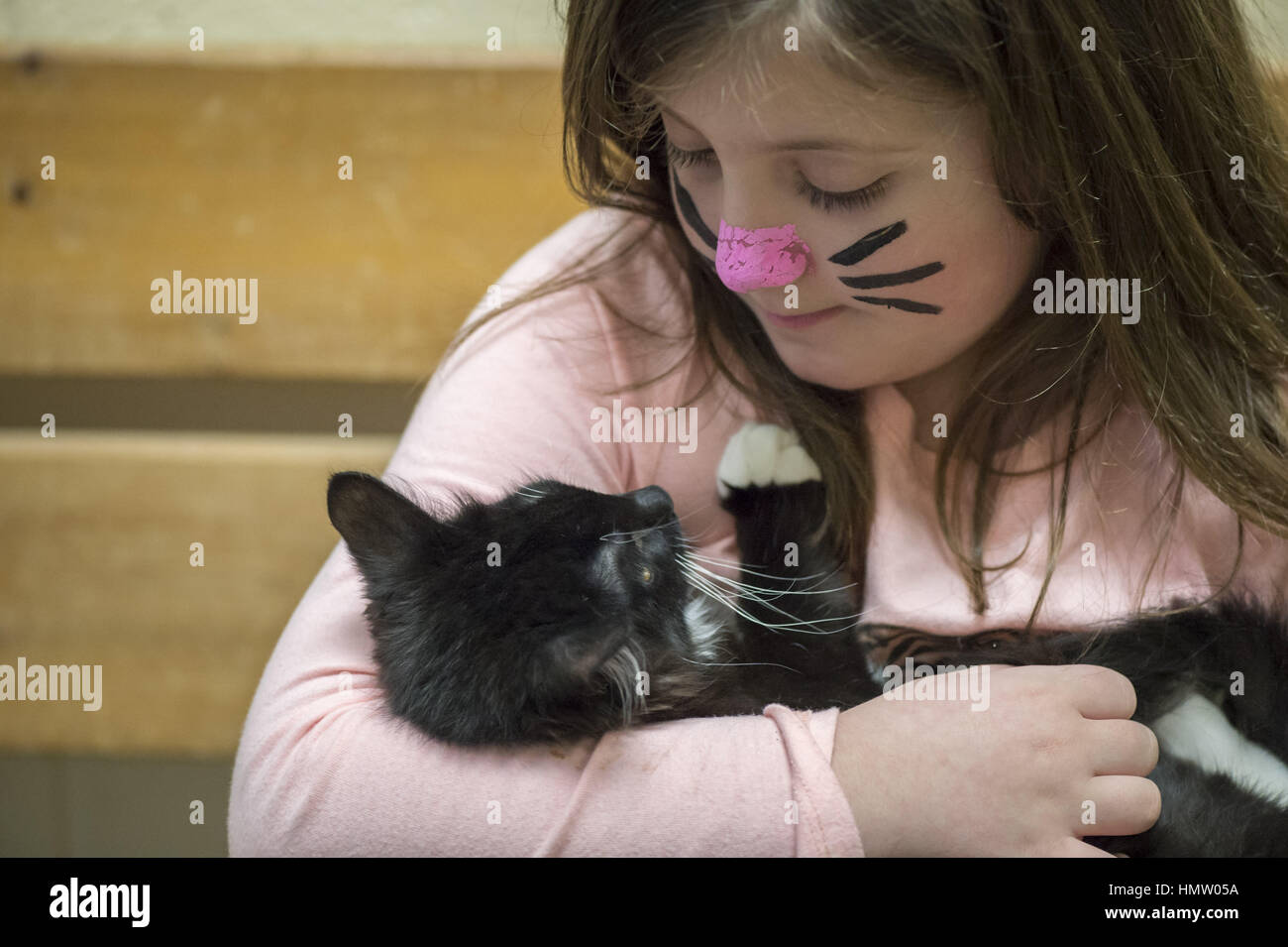 Wantagh, USA. 5th Feb, 2017. Ayla Shah, 6 1/2, of Merrick, is holding Salsa, a 5 month old female kitten available - Stock Image