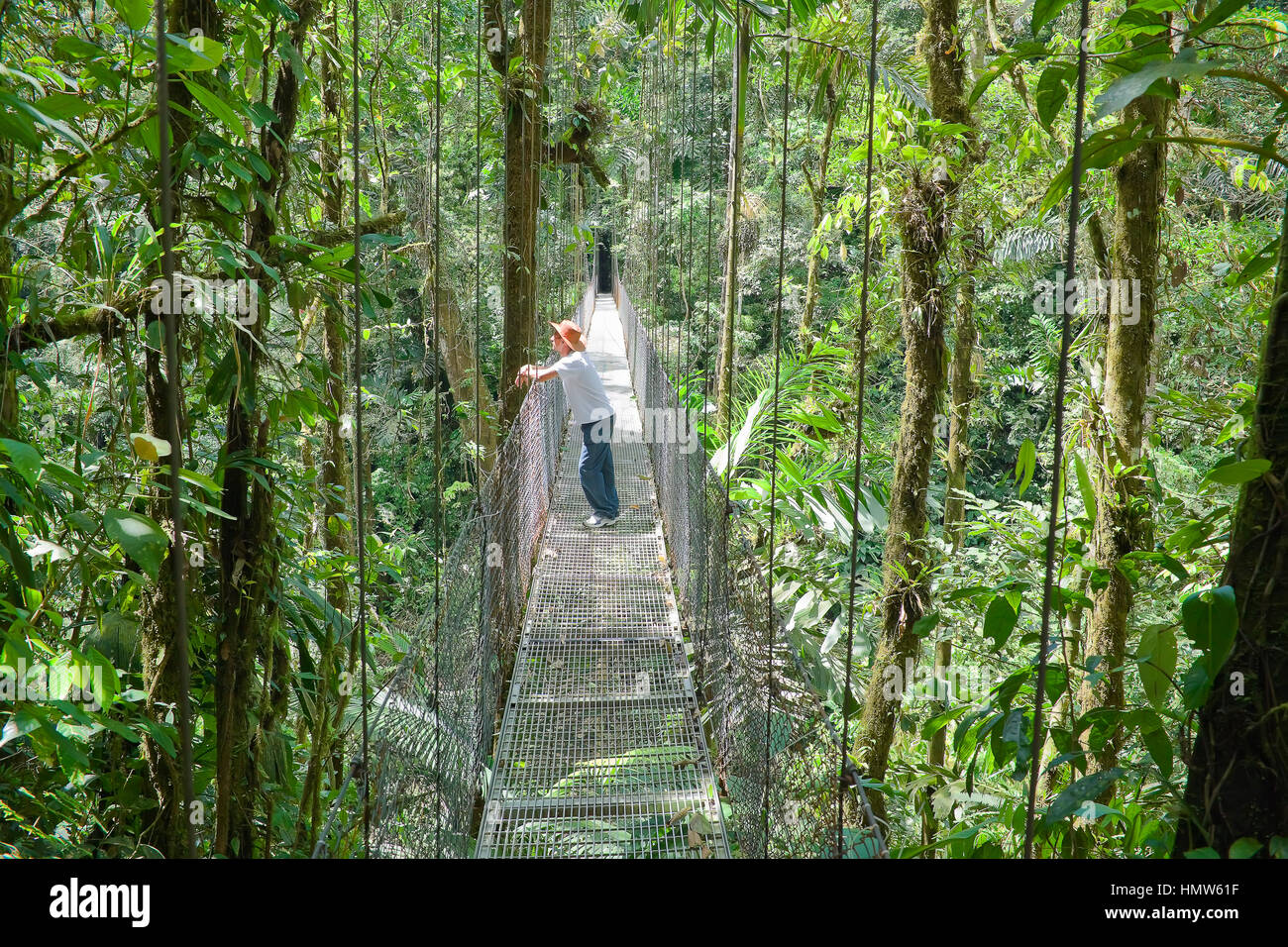 Man standing on hanging bridge in rainforest, La Fortuna, Costa Rica - Stock Image