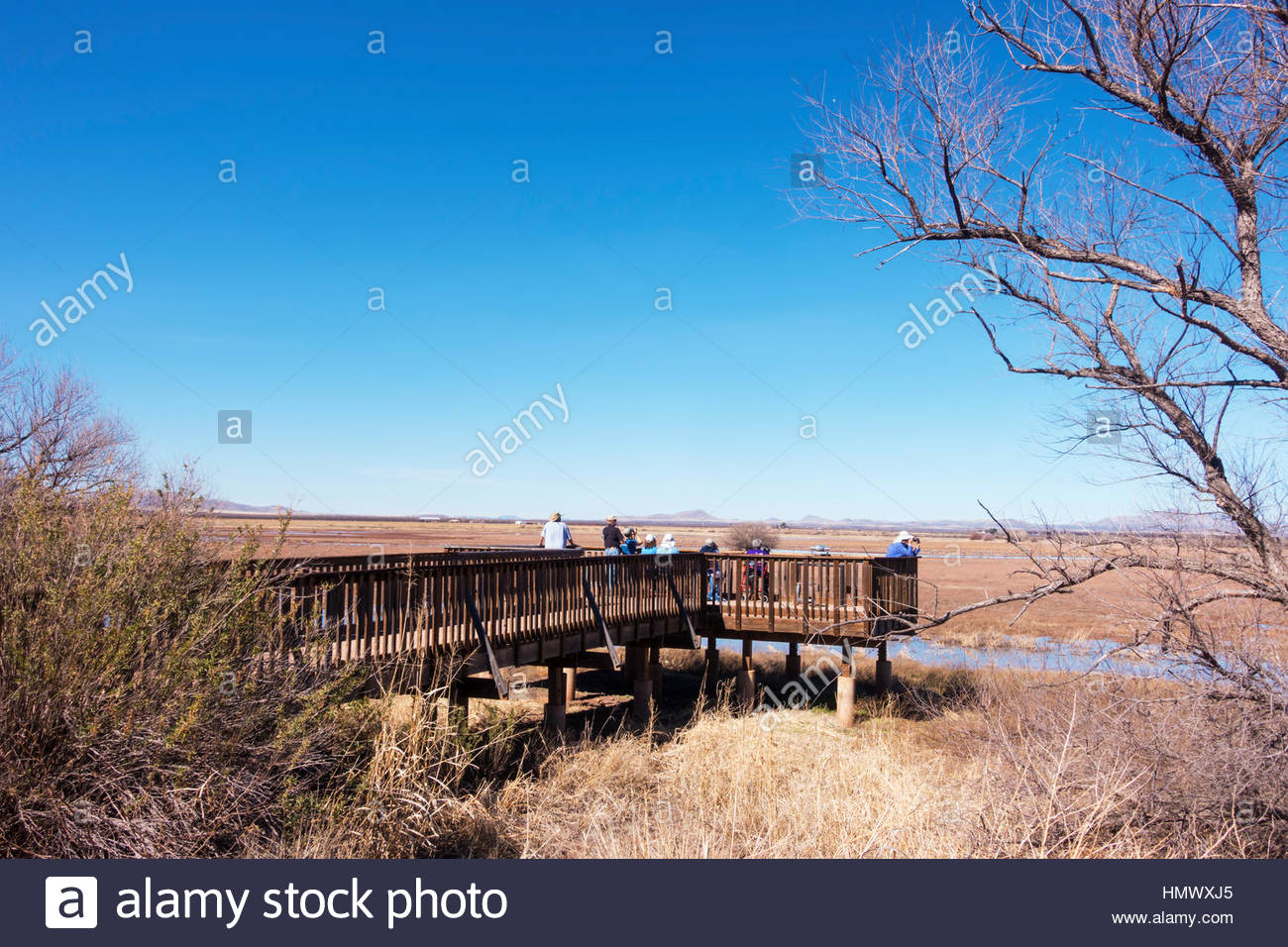 Birders on one of the observation decks at Whitewater Draw Wildlife Area in southeastern Arizona 8 people visible - Stock Image