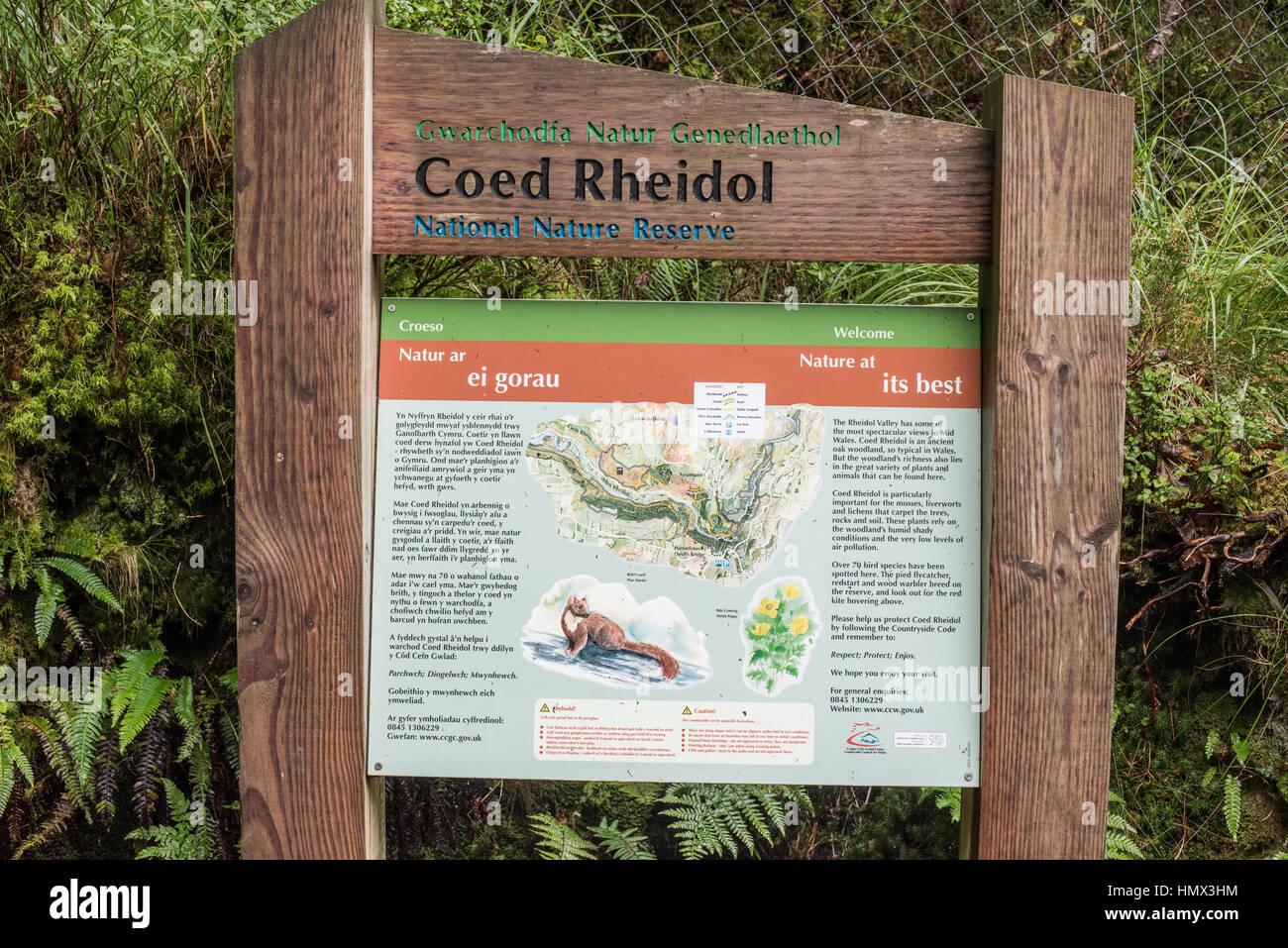 Information board at Coed Rheidol nature reserve, Ceredigion, Wales Stock Photo