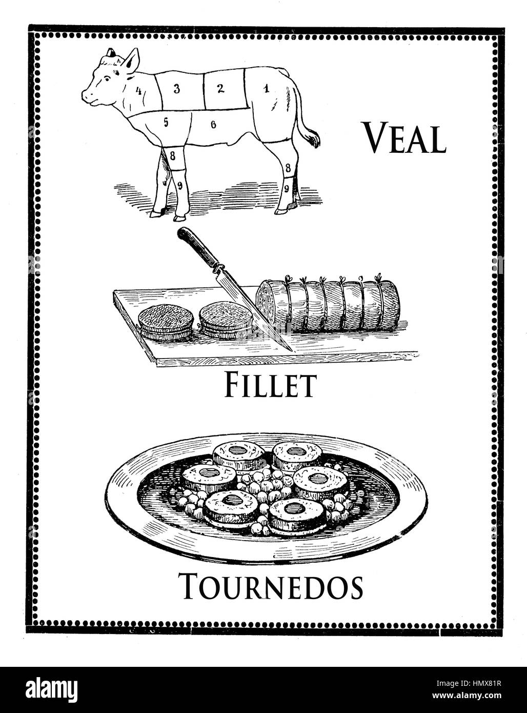 Vintage cuisine engraving, roasted veal fillet, tournedos and calf diagram with numbered sections - Stock Image